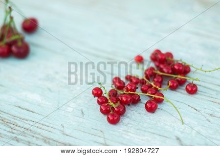 Berries of red currant summer vitamins background crop on blue