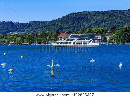 Zurich, Switzerland - 18 June, 2017: Lake Zurich as seen from the city of Zurich with birds in the foreground and MS Pfannenstiel passing in the background. Lake Zurich is a lake in Switzerland, extending southeast of the city of Zurich.