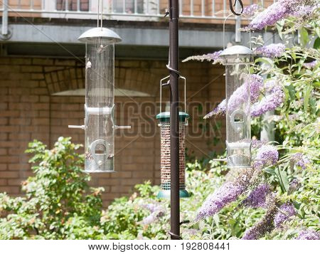 Hanging Bird Feeders Outside In The Sun Empty Uk