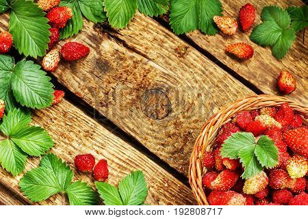 Fresh ripe strawberries in a basket on wooden table with green laves. Copy space