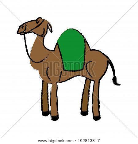 cartoon camel animal manger design vector illustration
