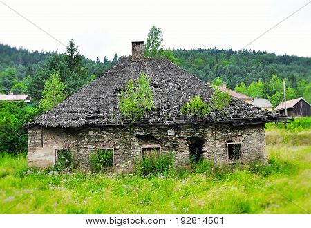 Nostalgic deserted ruined old house with trees on the roof Slovakia