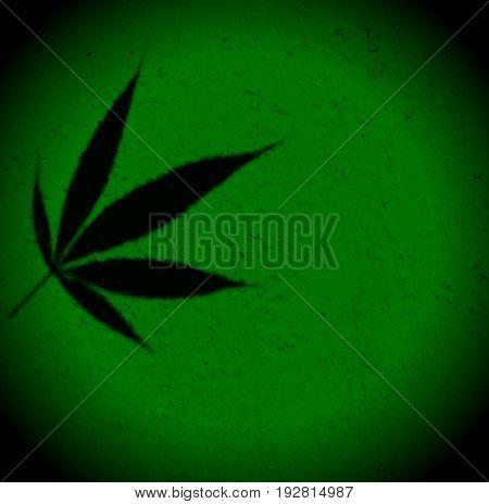 Bright green framed marijuana ganja hemp squared background