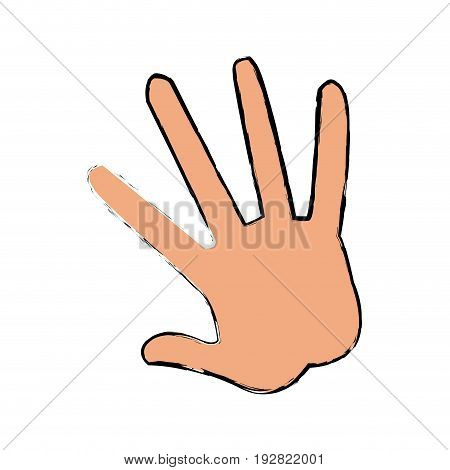 hand human showing five finger vector illustraton