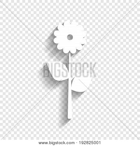 Flower sign illustration. Vector. White icon with soft shadow on transparent background.