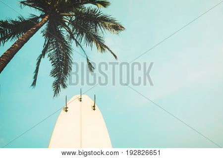 Surf board with palm tree in summer season. vintage color tone