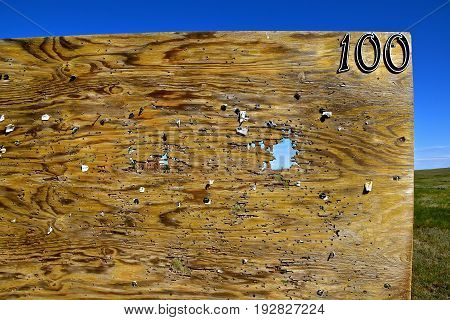 Plywood riddled with holes used for target shooting by rifles at 100 yards