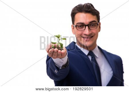 Businessman holding green sprouts isolated on white