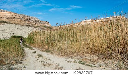 Young unrecognized teenager walking in the nature between reeds