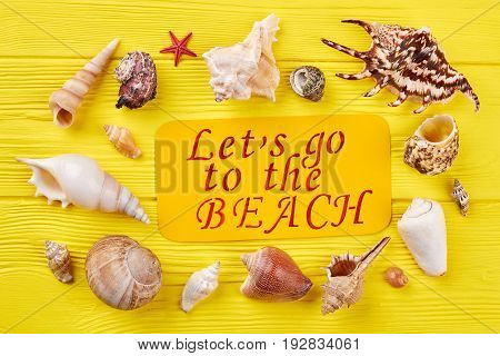 Collection of seashells, yellow board. Different seashells around paper inscription. Summertime ocean resort concept.