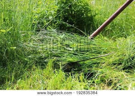 The worker mows the grass with a scythe. Russia