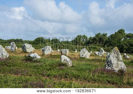 old neolitic menhirs in Carnac - France