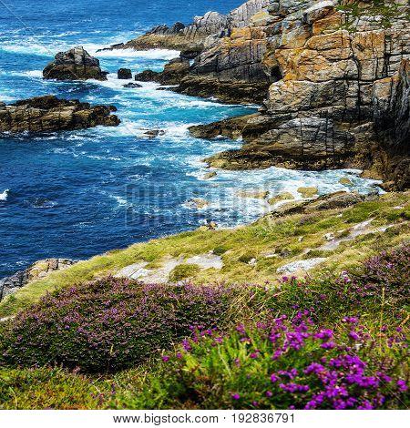 beautiful coastal cliffs in Brittany  - France