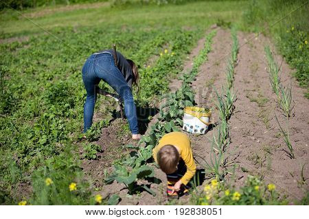 Woman with child working garden with a hoe. Hobbies and ecological living background