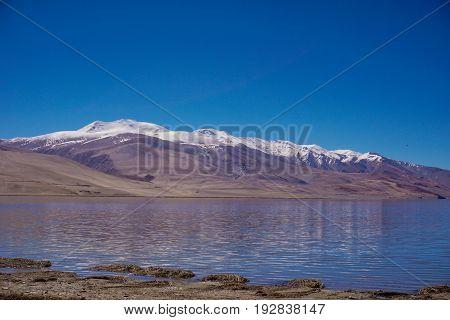 View of  Tso Moriri  lake with blue sky ,Leh Ladakh,  Jammu and Kashmir, India Beautiful amazing nature background landscape.