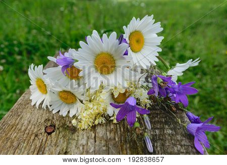 Beautiful bouquet of wild flowers daisies and bells on wooden bench