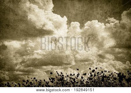Grunge Image Of Cloudy Sky And Grass, Perfect Halloween Background