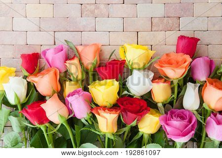 Colorful fresh roses on a rustic stone background
