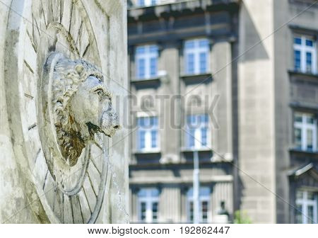 Lion head statue on stone fountain wall spouting water
