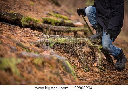 Closeup of boy's feet on tree snag in the forest. Child walking outdoors. Kid sitting on old stump.
