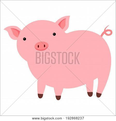 Vector happy cute pink smiling pig isolated on white background