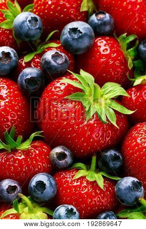 Closeup Macro of Tasty Ripe Red Strawberry with Fresh Blue Berries. Pile Hipe of Summer Berries Fruits. Summer Healthy Food Concept.