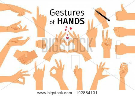 Hands gestures isolated on white background. Colored hand gesture set with manicured nails and good skin vector illustration