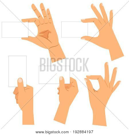 Hands with paper business cards isolated on white background. Male hand holding blank card collection isolated on white background