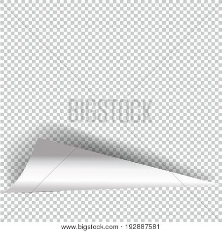 Curly Page Corner realistic illustration with transparent shadow