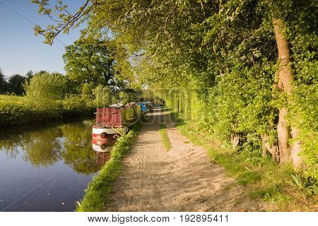A summer afternoon on the 200 year old Shropshire Union canal in England with traditional British narrowboats moored up on the bank