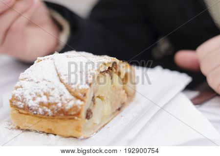 Slice of apple strudel with powdered sugar typical from Austria and South Tyrol