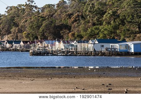 Hobart Australia - March 19. 2017: Tasmania. Closeup of row of small beach houses built over blue river water at Cornelian Bay. Green tree vegetation in back. In front beach.
