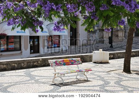 Painted Bench In The Park, Aveiro, Portugal