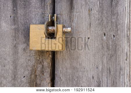 Aged grunge gold lock pad on vintage ancient wooden door.