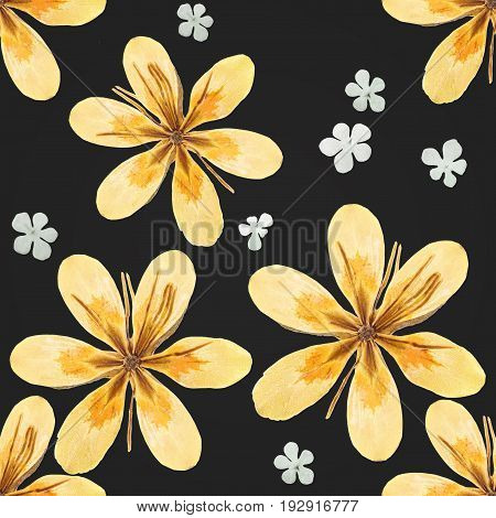 Pressed and dried yellow flowers isolated on a cream background pattern. For use in scrapbooking floristry or herbarium.