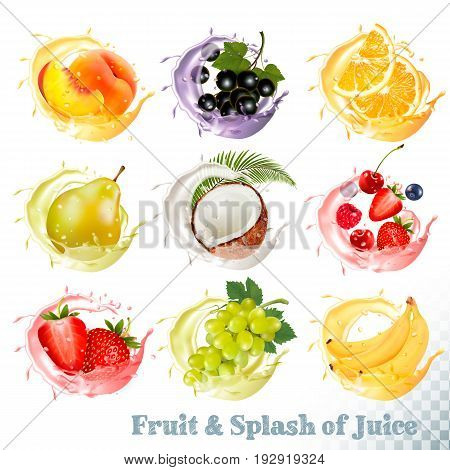 Set of fruit juice splash . Peach orange pear grapes banana coconut blueberry strawberry raspberry and blackberry. Vector