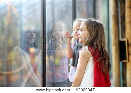 Two Cute Little Sisters Watching Animals In The Zoo On Warm And Sunny Summer Day