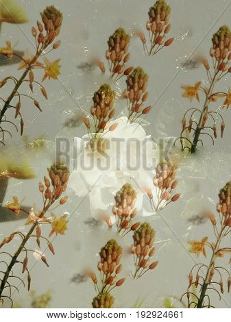 An artistic and abstract composition with some flowers