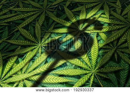 Cannabis business and marijuana industry concept as the shadow of a dollar sign on a group of leaves in a 3D illustration style.