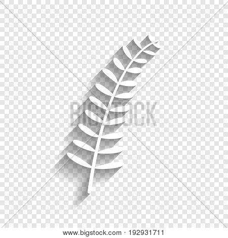 Olive twig sign. Vector. White icon with soft shadow on transparent background.