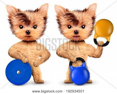 Funny dog holding sport equipment. Concept of sport and fitness food. Realistic 3D illustration.