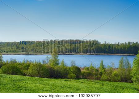 Clear summer wild lake with forest. Russia