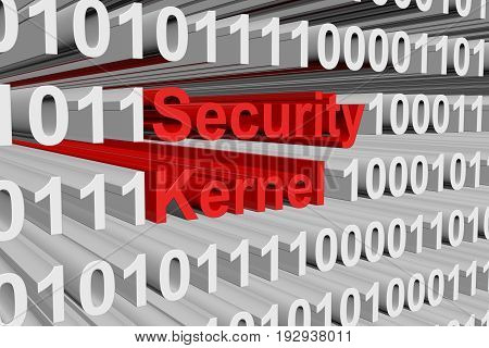 security kernel is presented in the form of binary code 3d illustration