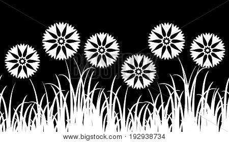vector seamless border with cornflowers in grass isolated on black background