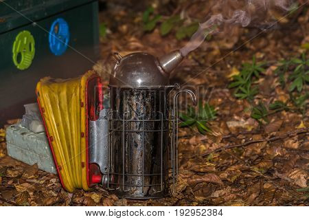smoker ready for work with bees in front of hive