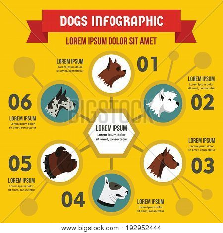 Dog breeds infographic banner concept. Flat illustration of dog breeds infographic vector poster concept for web