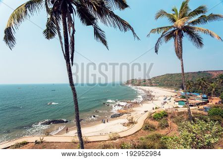 Beach under the palm trees and tourist relaxing in waters of ocean, Goa state, India