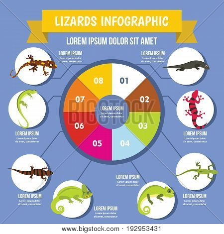 Lizards infographic banner concept. Flat illustration of lizards infographic vector poster concept for web