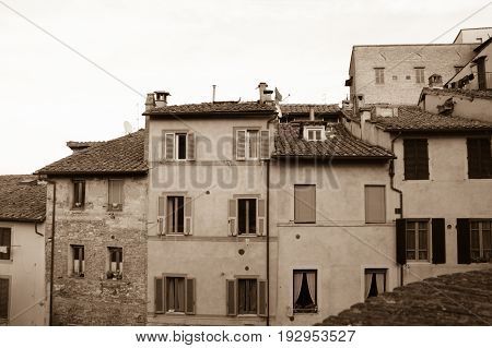Italy Siena - December 26 2016: the view of old narrow building in Siena on December 26 2016 in Siena Tuscany Italy.