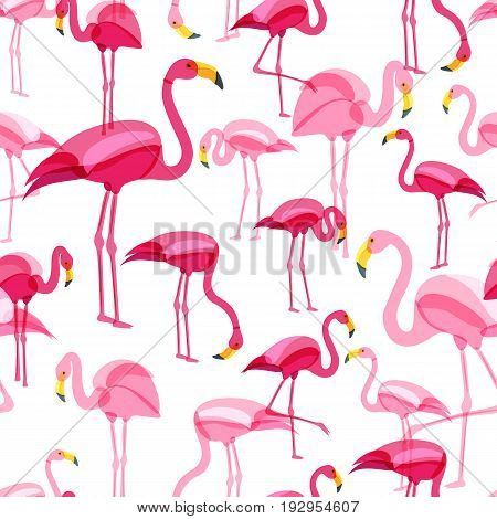 Vector Seamless Pattern With Pink Flamingo Isolated On White Background. Hand Drawn Doodle Illustrat